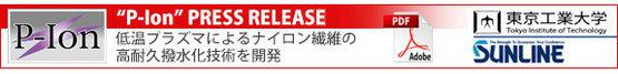 p_ion_banner.jpg